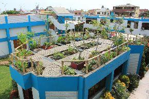 Los techos de San Borja lucirán verdes y limpios con programa lanzado por la municipalidad. Foto: ANDINA/Difusión.