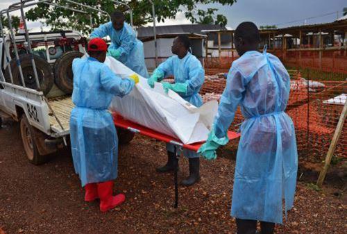 OMS: mueren 84 personas y se registran 113 nuevos casos en 3 días por el ébola. Foto: AFP.