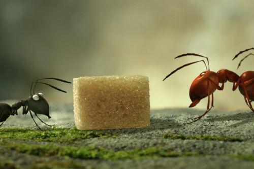 Escena de la película Minúsculos