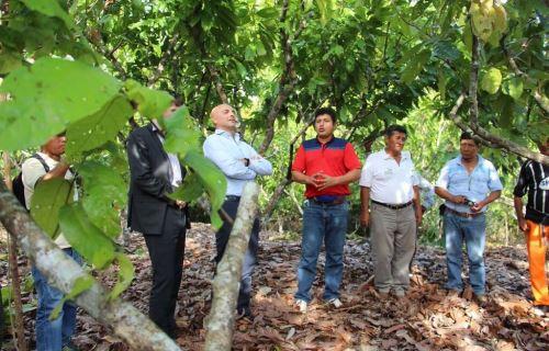 Expertos de la OCDE visitan proyecto de desarrollo agrícola en San Martín.