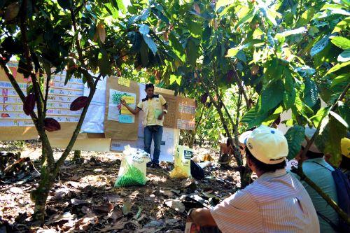 Jornadas de capacitación se desarrollaron en parcelas de agricultores.