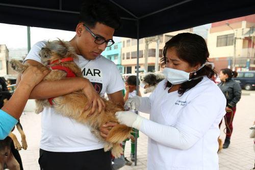 Campaña de vacunación antirrábica canina busca proteger a la población fronteriza.