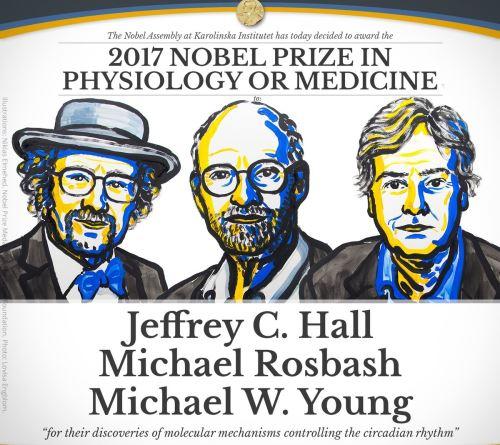 Así anunció la Academia Sueca a los ganadores del Nobel de Medicina.