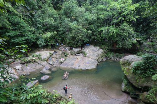 Camino a la cascada de Pishirayacu