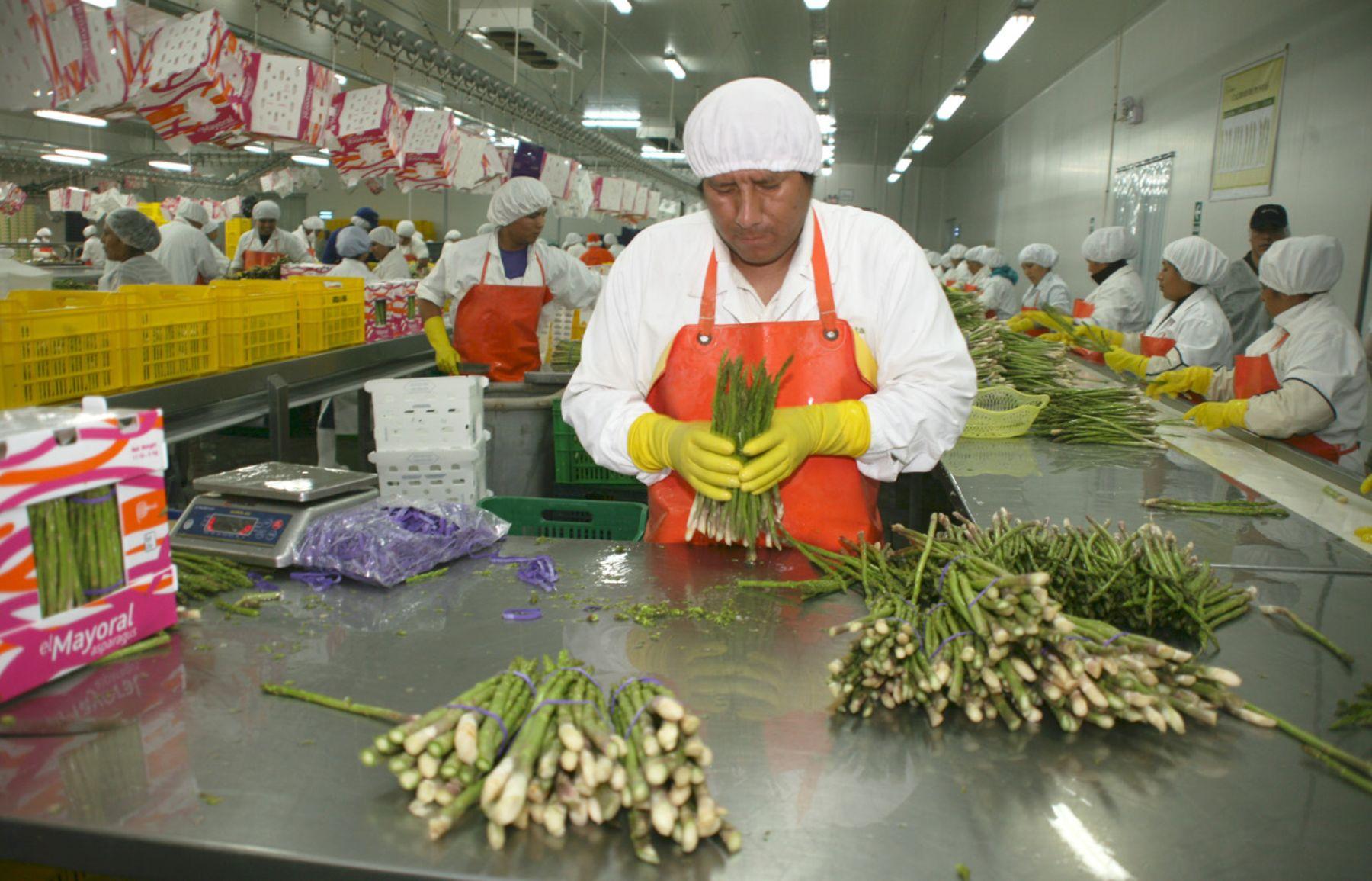 Resultado de imagen para Exportaciones Peruanas Al Brasil Alcanzarán Los US$ 1,505 Millones Este Año
