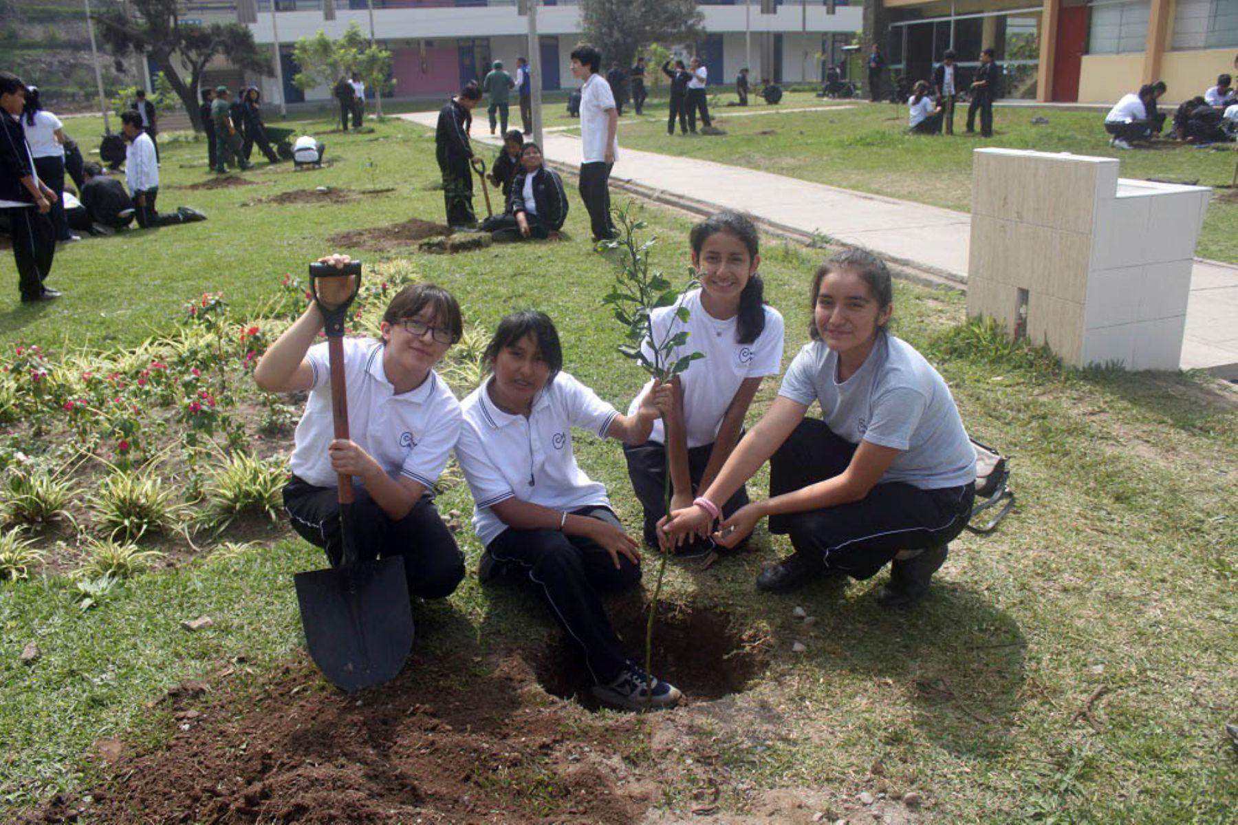Estudiantes del colegio mayor reafirman su compromiso con el cuidado del ambiente noticias - Agencias para tener estudiantes en casa ...