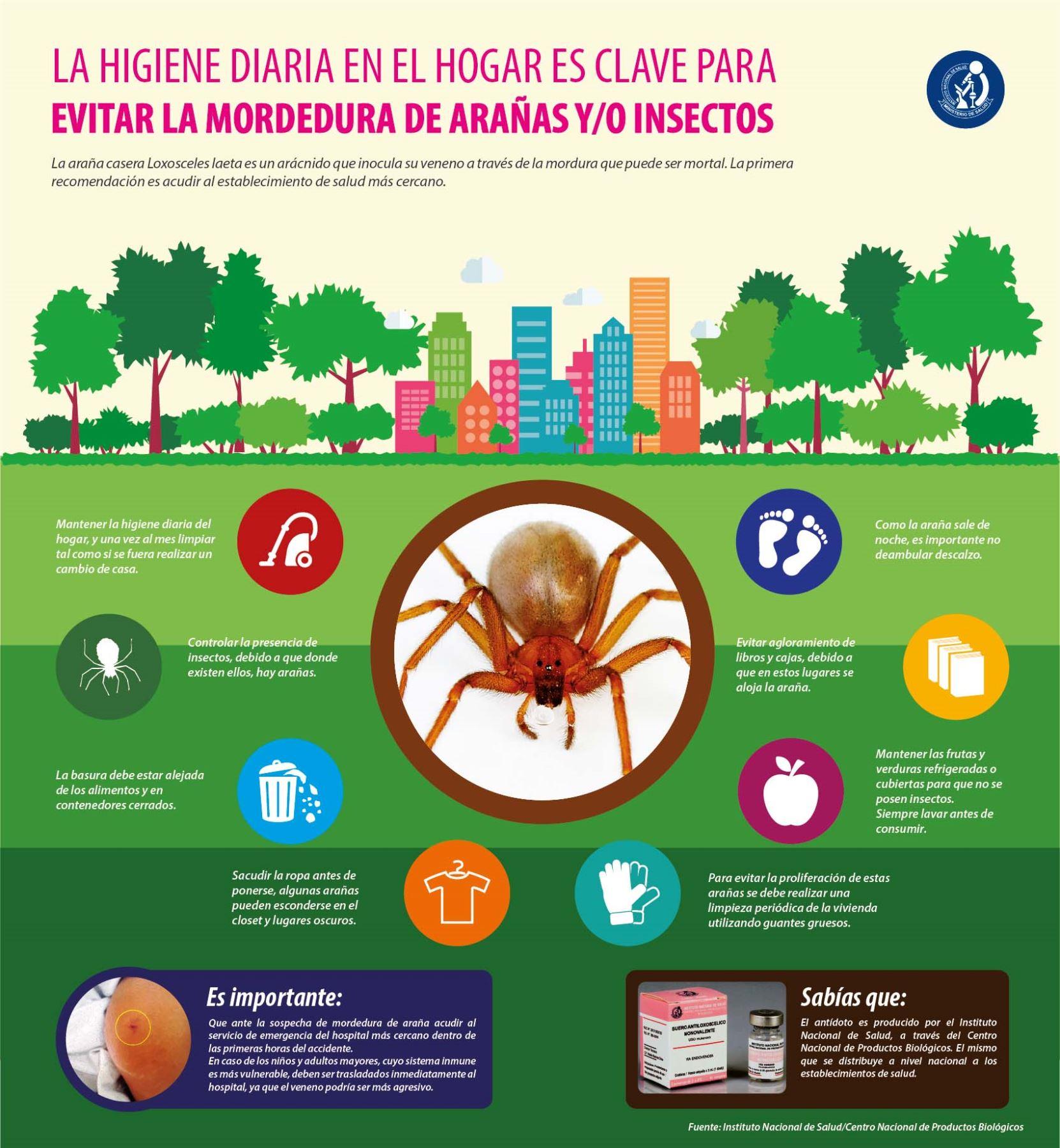 Aseguramiento universal de salud per plantas for Como combatir los bichos de la humedad