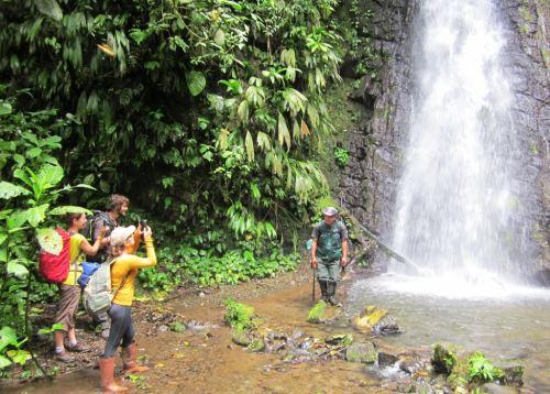 Inauguran ruta turística Tres de Mayo en Parque Nacional Tingo María. Foto: ANDINA/Difusión.