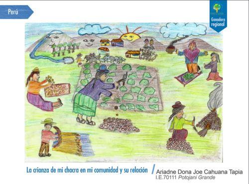 Dibujo con el que la niña puneña Ariadne Cahuana ganó concurso regional de la FAO. Andina/Difusión
