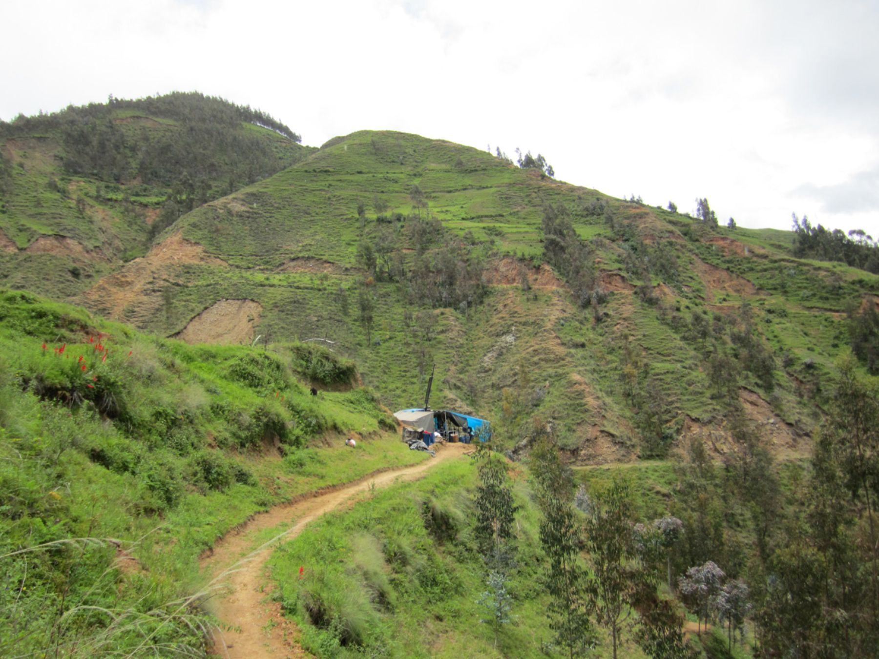 Resultado de imagen para Panoro Minerals completó EIA ampliado en proyecto Cotabambas