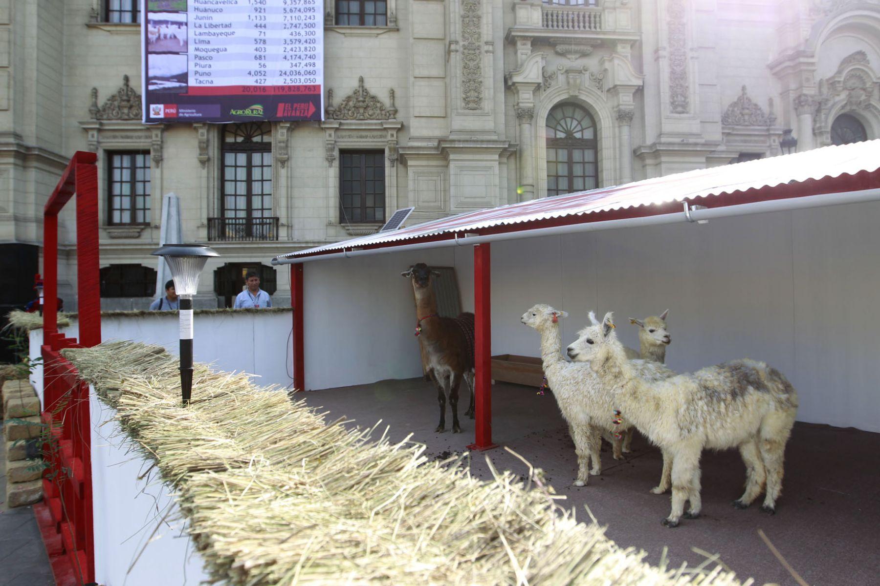 Minag construy 20 016 cobertizos para ganado desde el for Cobertizos para patios