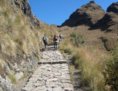 Inca Trail in Machu Picchu. Photo:ANDINA/Sernanp