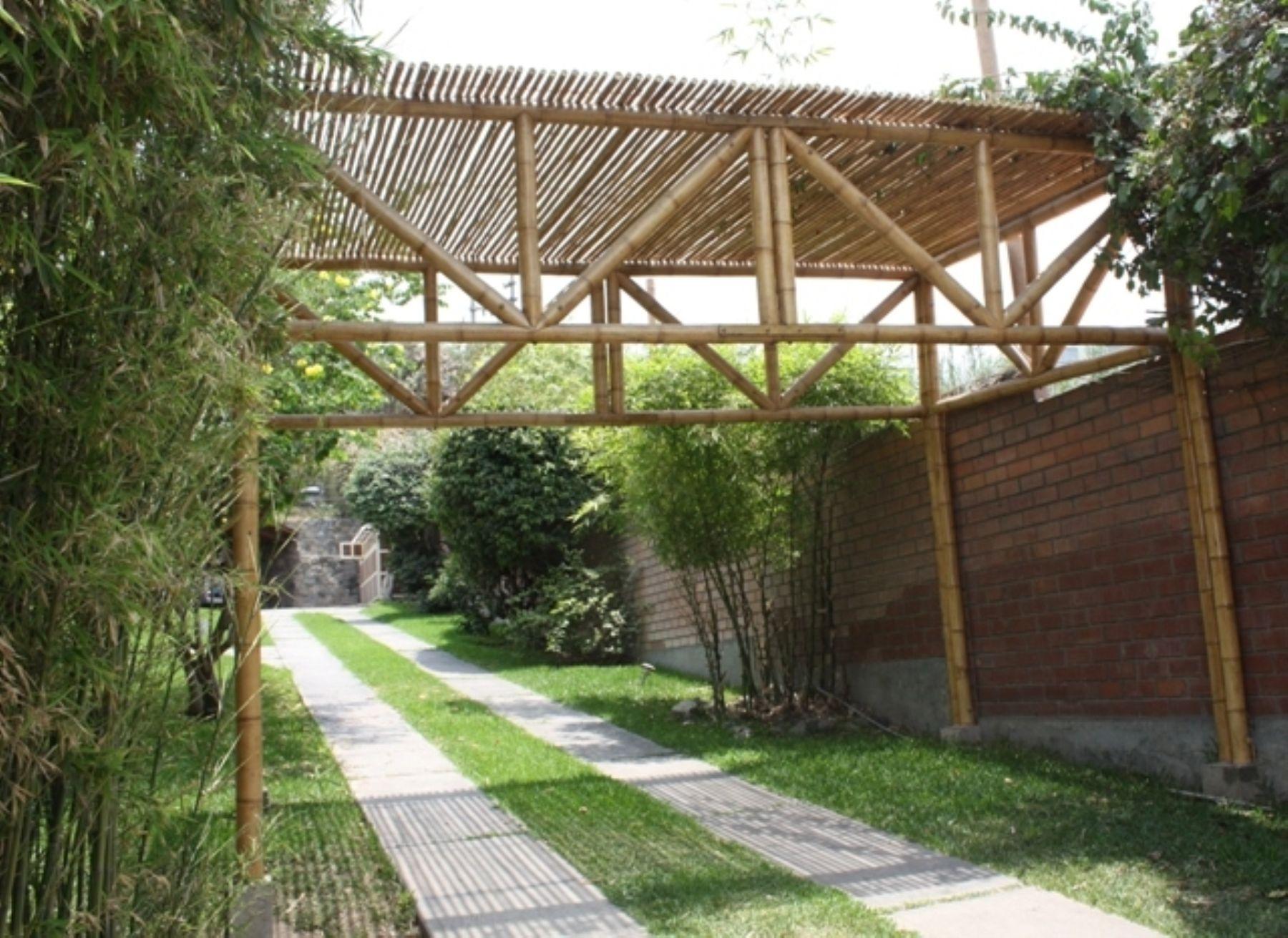 Se fomentar uso de bamb para casas baratas y - Construccion de casas baratas ...