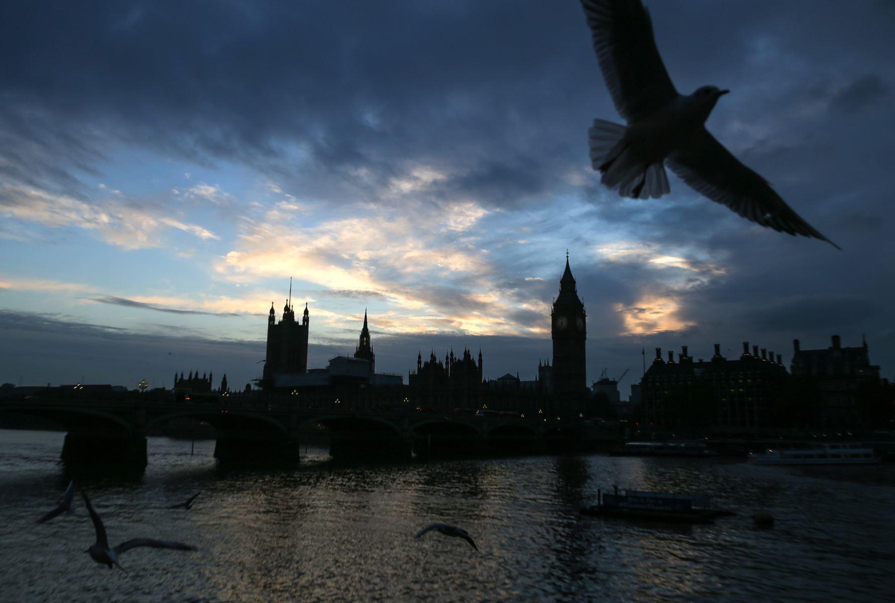 Gaviotas vuelan sobre el río Támesis en Londres. Foto: AFP