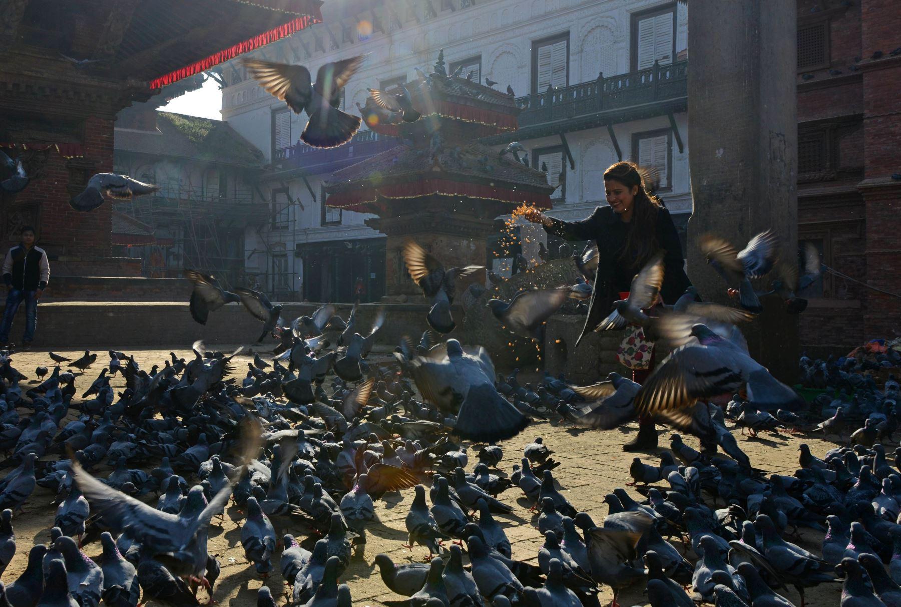 Una mujer nepalí alimenta palomas en la Plaza Durbar en Katmandú. Foto: AFP