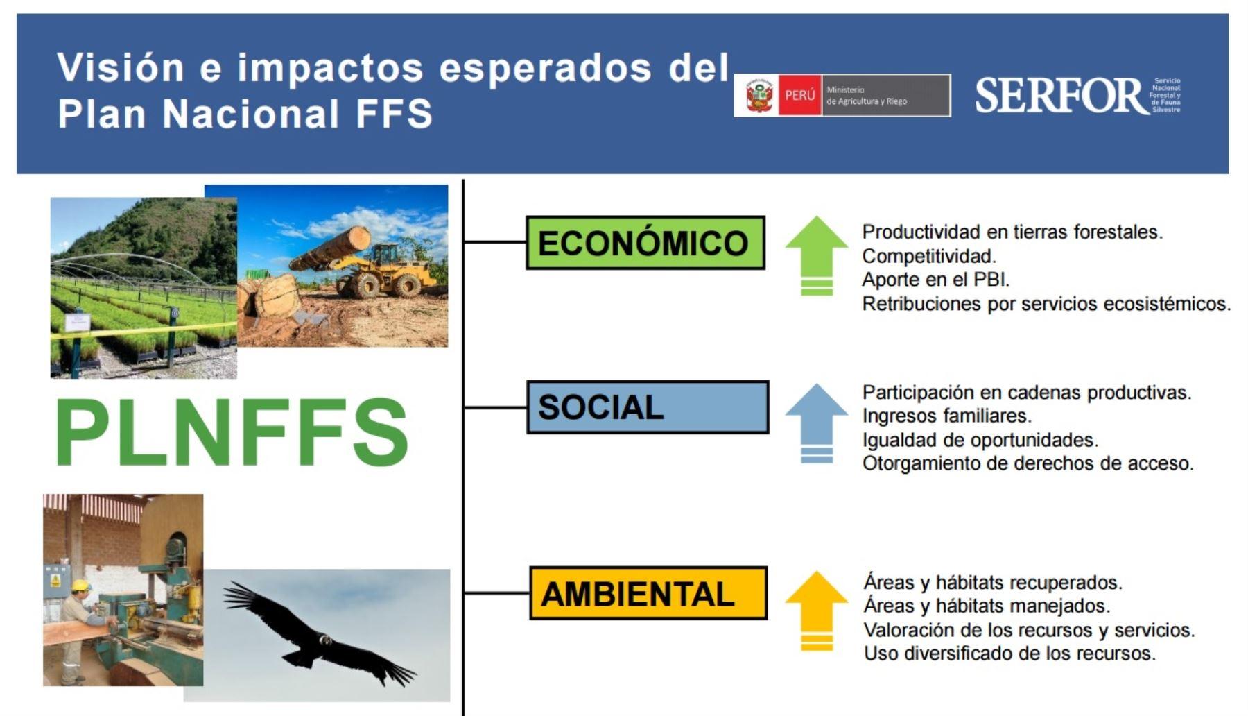 Visión e impactos esperados en el Plan Nacional Forestal y de Fauna Silvestre
