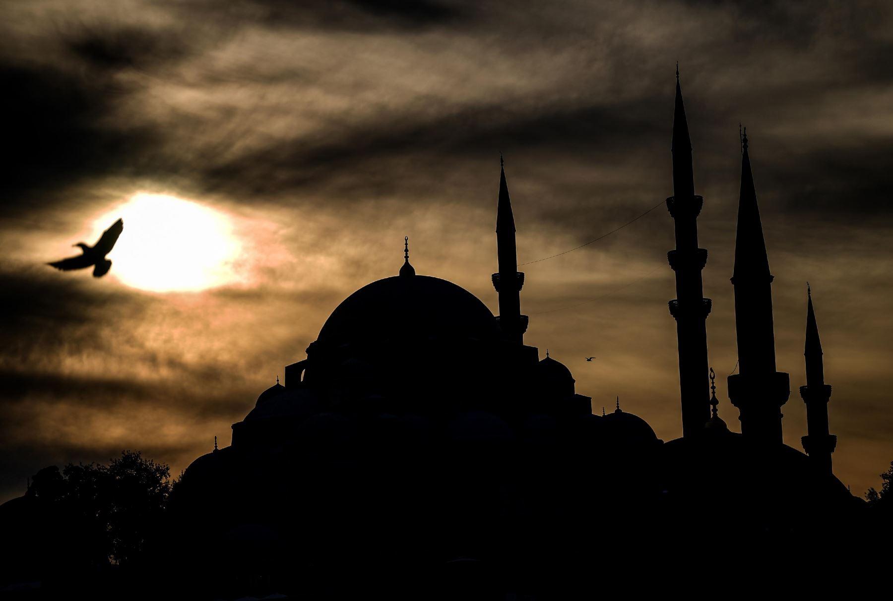Una gaviota sobrevuela la mezquita de Suleymaniye en Turquía. Foto: AFP