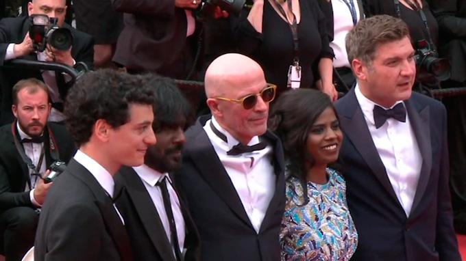 Conozca a los ganadores del Cannes 2015