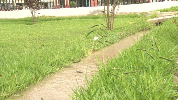 30 % de agua usada para regar parques y jardines de 16 distritos de Lima es potable