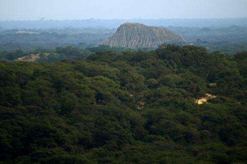 Con circuito buscan promover turismo en Santuario Histórico Bosque de Pómac.